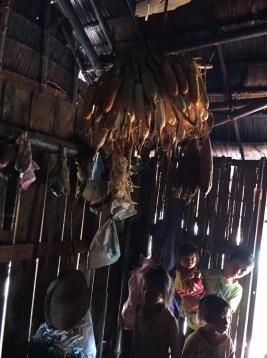 Corn hanging from ceiling Hmong home